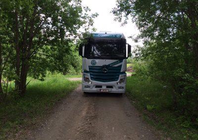 JK34-Metsä